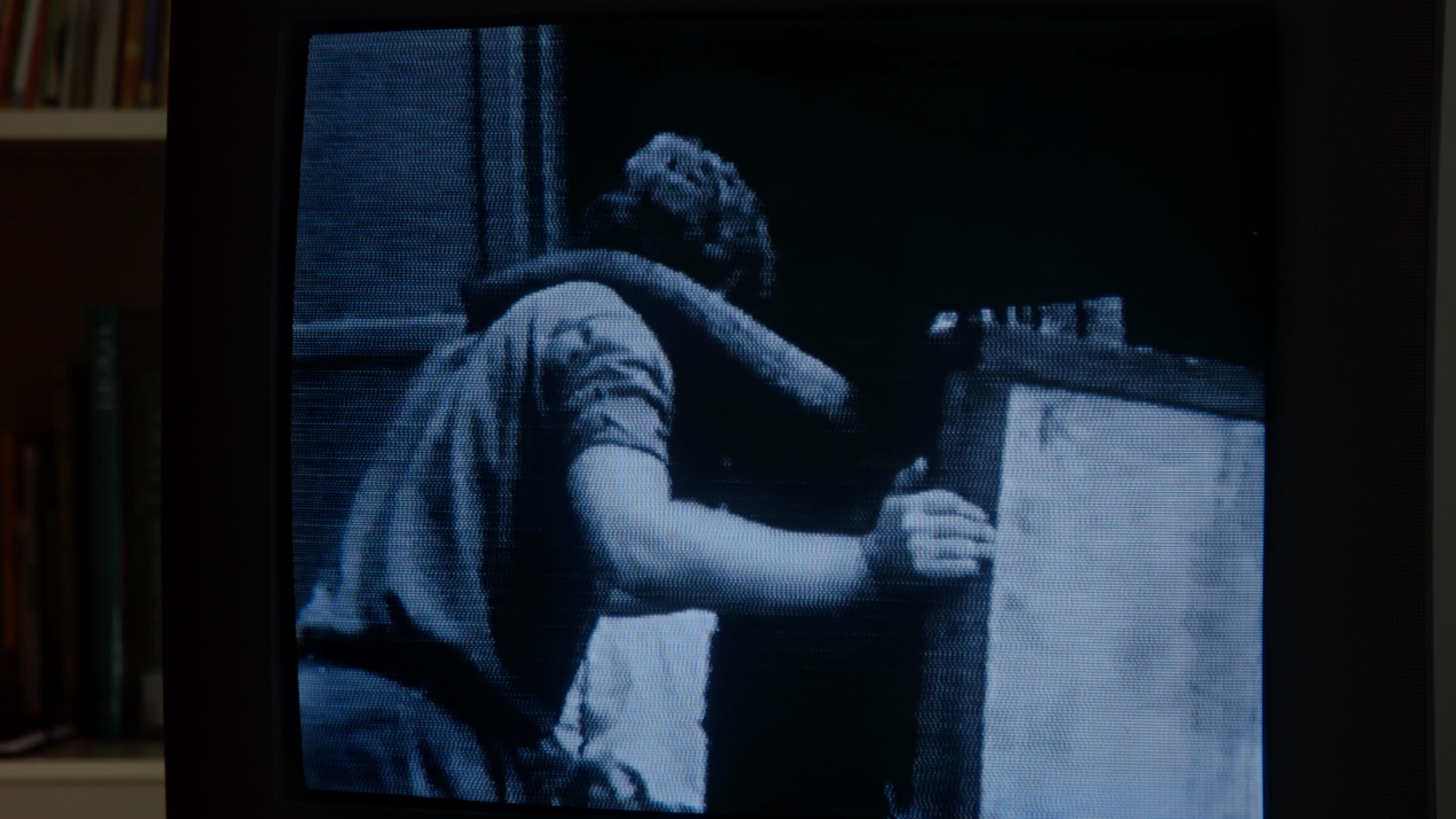 Bild von einem Monitor, auf dem ein Elefantenrüssel auf der Schulter eines Mannes ruht.